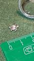 Петит морская черепашка 🐢