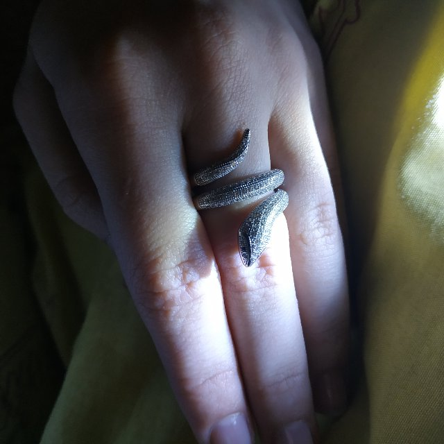 Классное кольцо 🐍