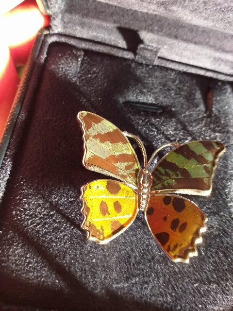 Эмалевая бабочка-брошь зелено-оранжевая с обычной застежкой.